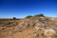 Quellen aus dem artesischem Becken am Odnandatta-Track (2)