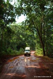Straße im Regenwald auf Cape York