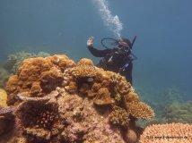 Kati hinter der Koralle