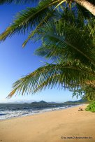 Palm Cove am Morgen (2)