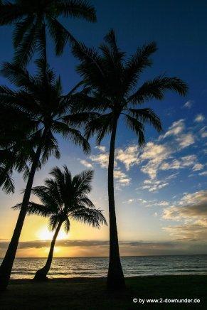 Sonnenaufgang am Strand von Palm Cove (3)