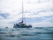 Unser Schnorchelschiff am Great Barrier Reef