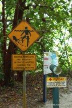 Vorsicht Quallen-Schild
