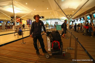 Falk am Flughafen in Brisbane