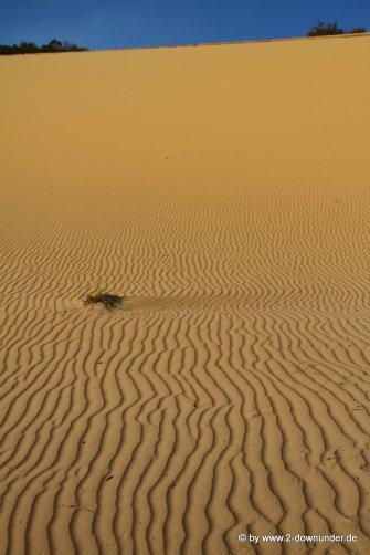 Sanddüne auf Fraser Island