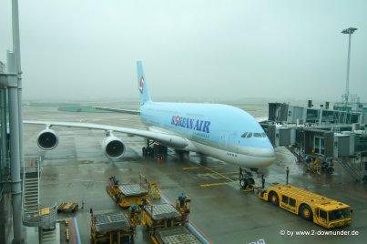 Unser Flugzeug in die Heimat_2