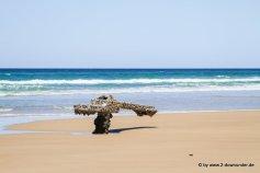 Wrack der Maheno auf Fraser Island (4)
